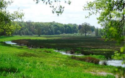Nieuwe natuur als onderdeel uitbreiding AgroProeftuin de Peel